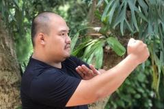 Master KungFu